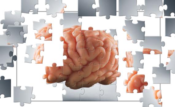 brain jigsaw puzzle